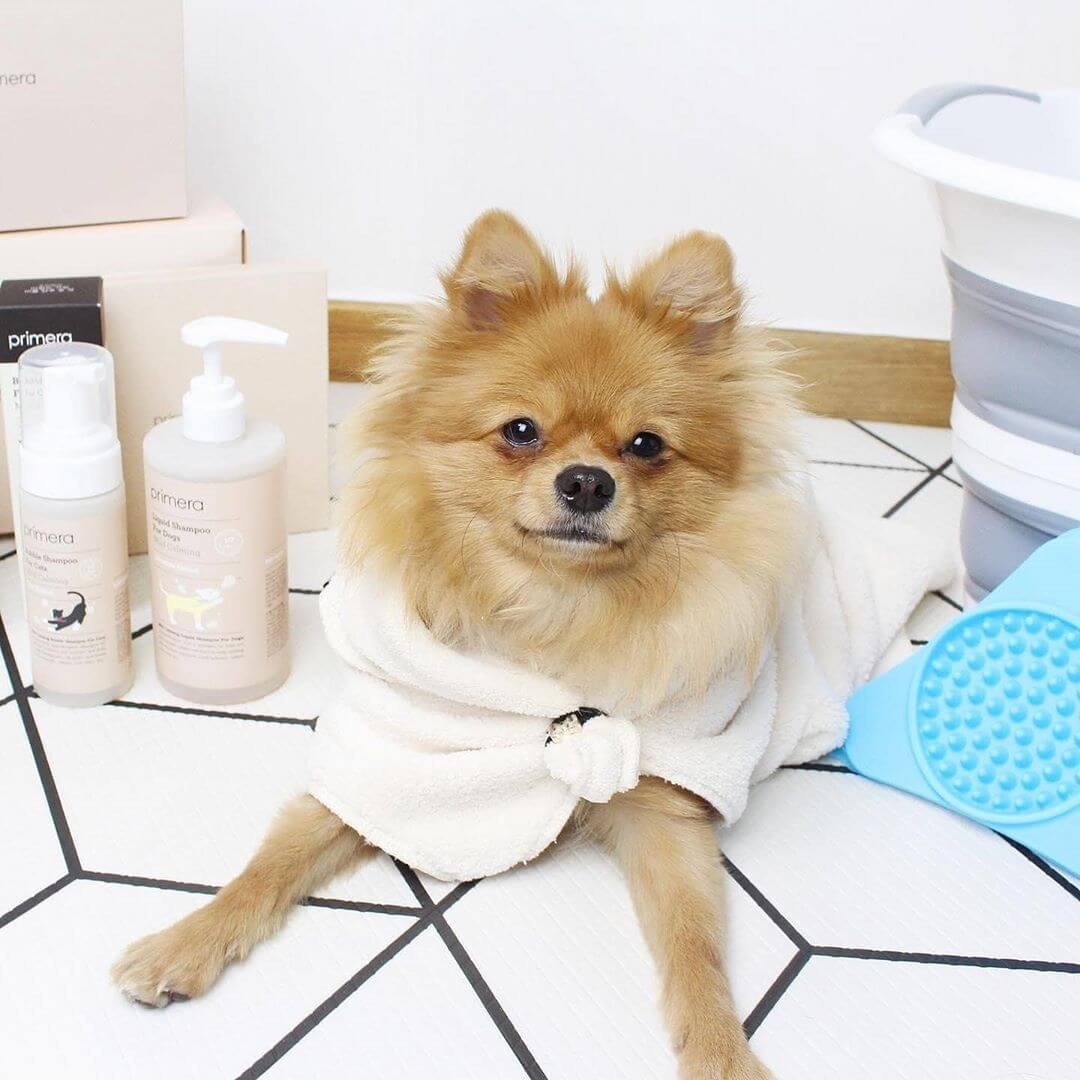 Primera Mild Calming Liquid Shampoo For Dog
