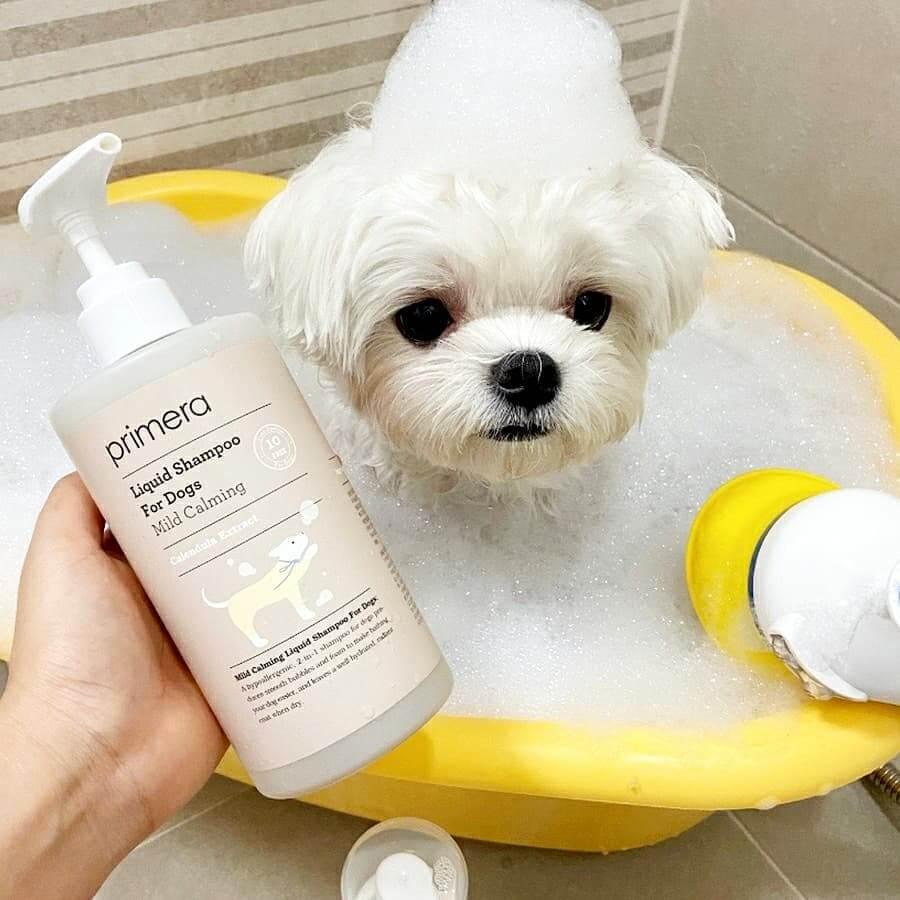 Primera Shampoo For Dog