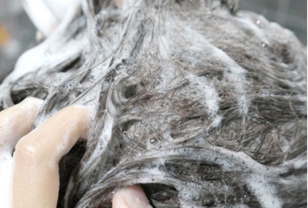 Calmomentree 芬蘭樺樹原液2合1洗頭水