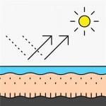 Sunscreen 防曬