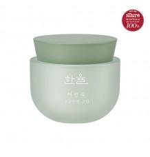 Hanyul Pure Artemisia Watery Calming Cream艾草高保濕水潤排毒舒緩水份面霜 (增量版)