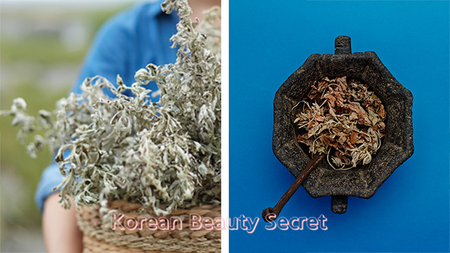 Hanyul Pure Artemisia Cleansing Foam